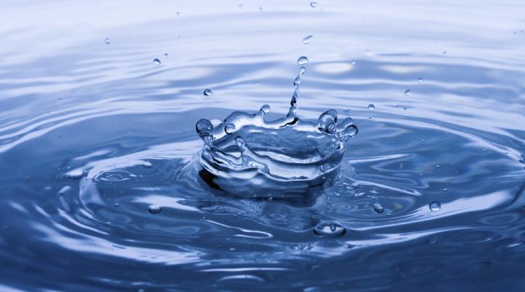 О миграции радионуклидов в водоемах