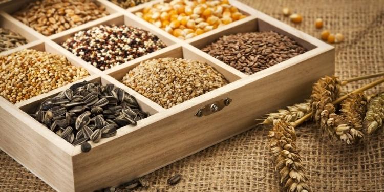 О проверке посевных качеств семян