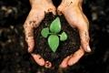 Об участии специалистов в отборе почвенных образцов для проведения агрохимических исследований