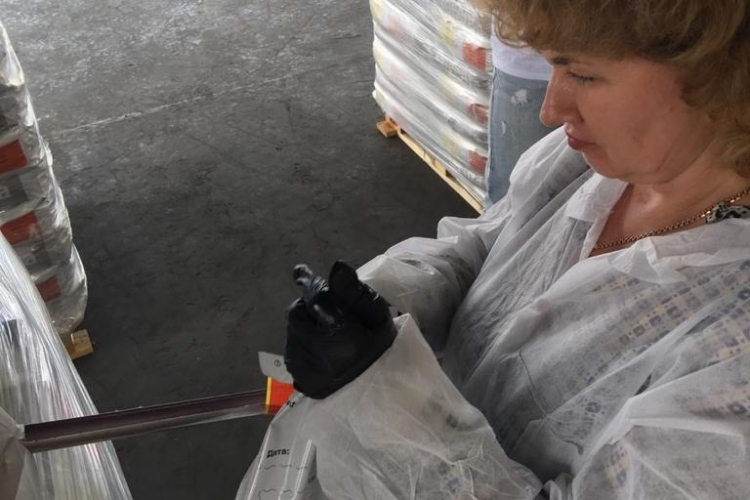 Пробы от партий семян направлены в отдел лабораторной экспертизы карантина растений