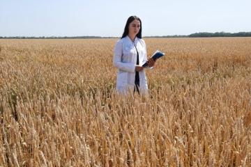 В Новокубанском МРО провели апробацию посевов
