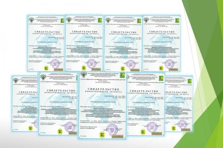 Сотрудники ФГБУ «Краснодарская МВЛ» прошли обучение по программе подготовки экспертов в Системе добровольной сертификации семян сельскохозяйственных растений «СемСтандарт»
