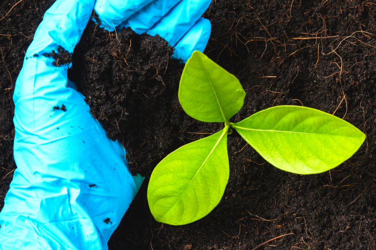 Результаты исполнения госзадания по исследованиям почвы за 8 месяцев 2021 года